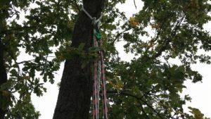 Absicherung mit Seil
